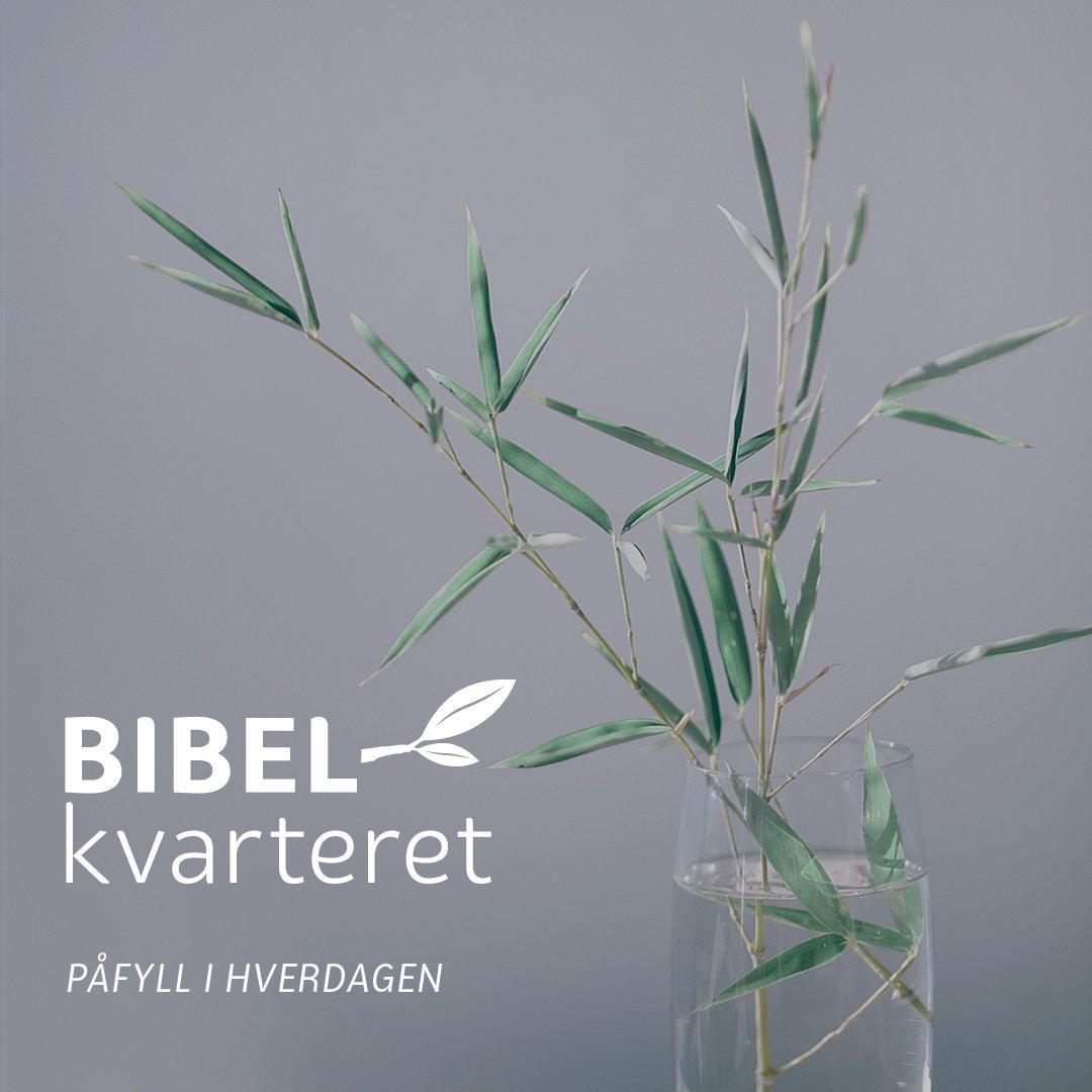 Bibelkvarteret