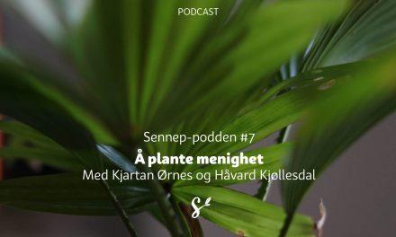 #7 | Å plante menighet | Med Kjartan Ørnes og Håvard Kjøllesdal