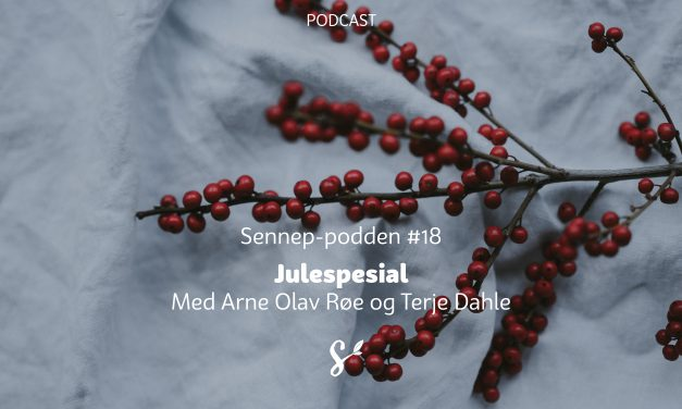 #18 | Julespesial | Med Arne Olav Røe og Terje Dahle