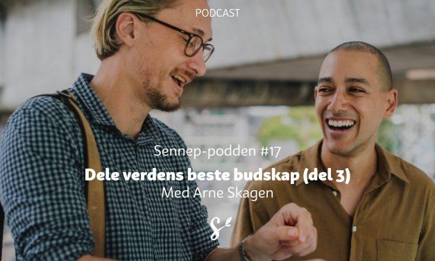#17 | Dele verdens beste budskap del 3 | Med Arne Skagen