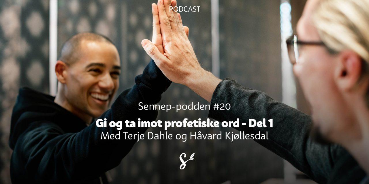 #20 | Gi og ta imot profetiske ord | Med Håvard Kjøllesdal og Terje Dahle