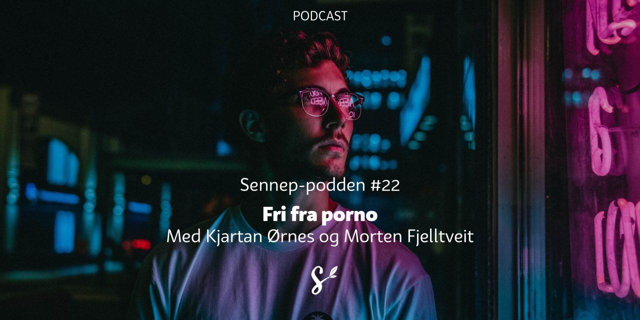 #22 | Fri fra porno | Med Kjartan Ørnes og Morten Fjelltveit