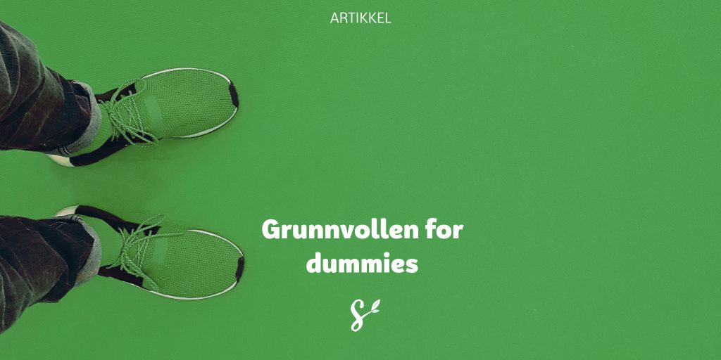 Grunnvollen for dummies - tittelbilde