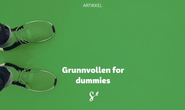 Grunnvollen for dummies