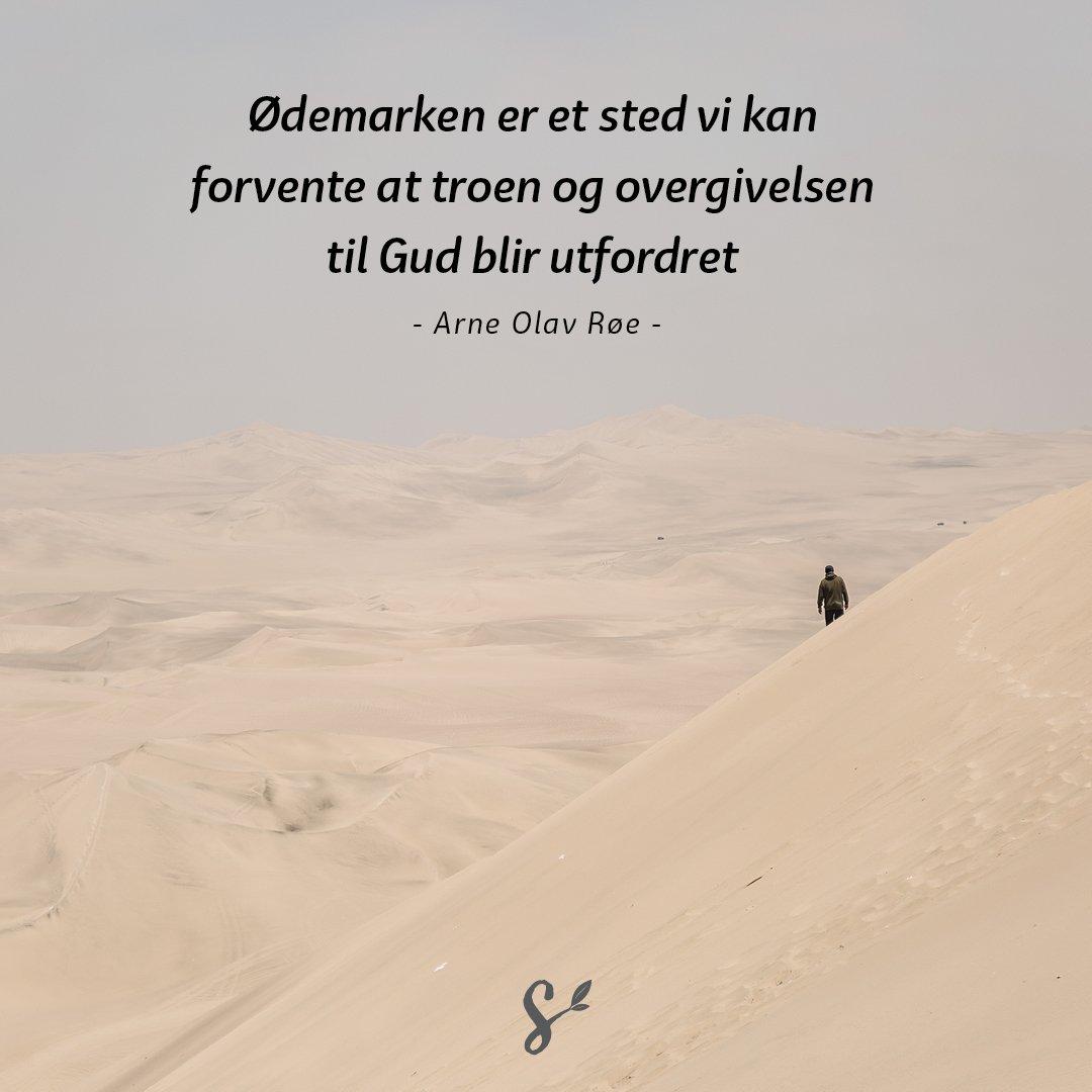 ørkenvandring - sitatbilde