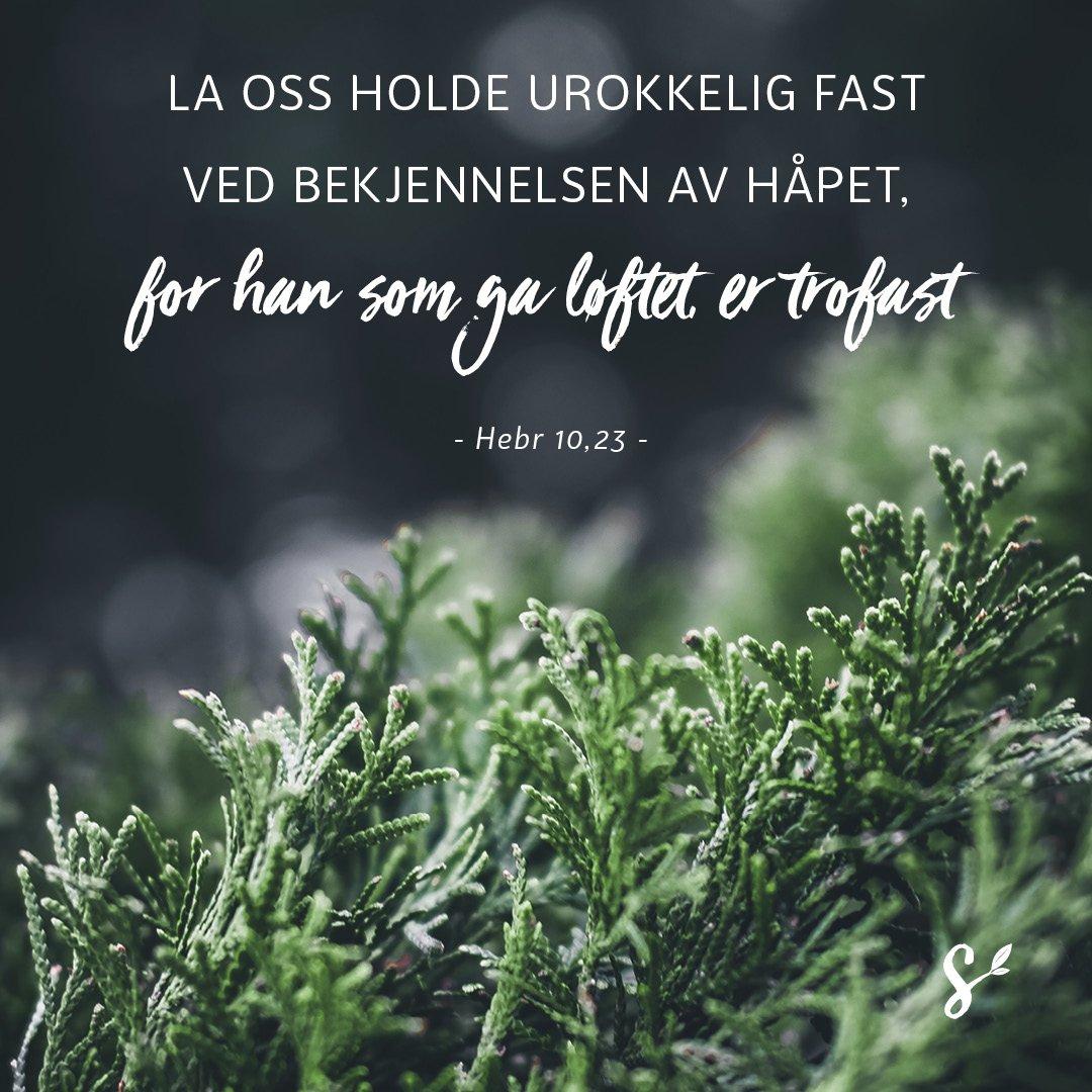 gud er vårt håp - sitatbilde