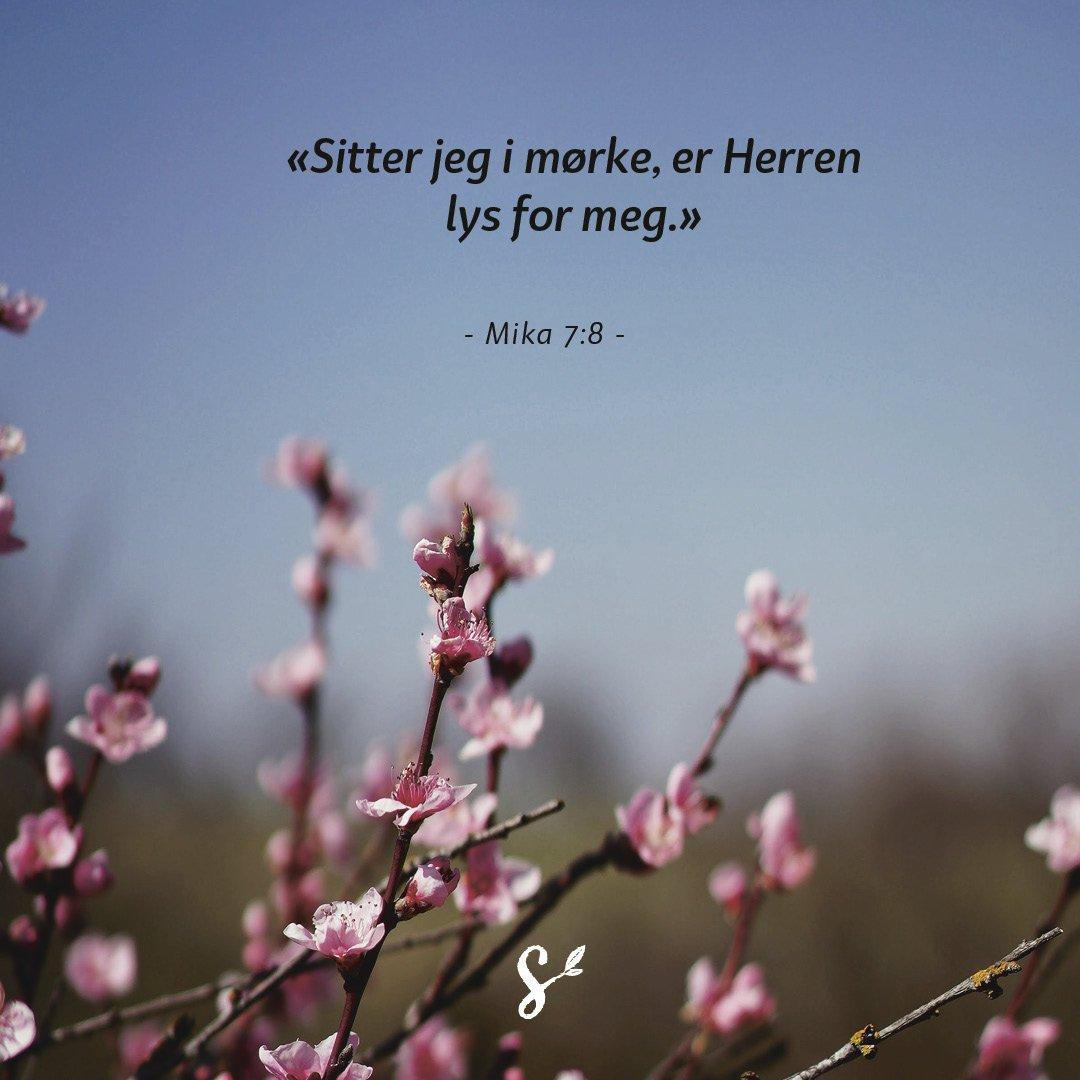 annerledes påske - sitatbilde