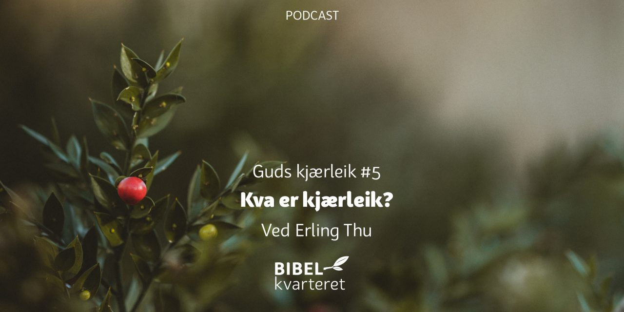 Guds kjærleik #5 Kva er kjærleik? | Med Erling Thu